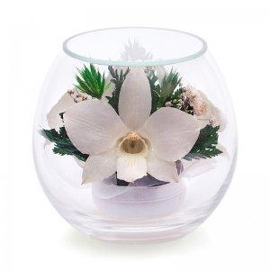 Композиция из белых орхидей (BmiM-05)