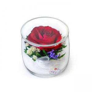 Композиция из красной розы (SSR)