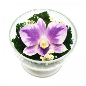 Композиция из орхидеи (CuSO1)