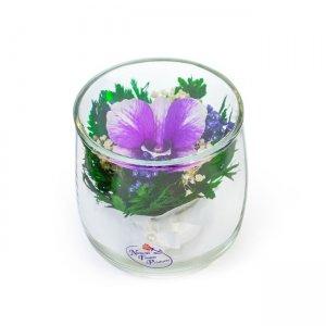 Композиция из натуральной орхидеи (SSO)