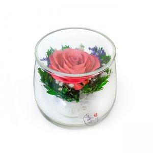 Композиция из натуральных роз (SSRp)