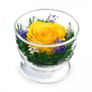 Композиция из желтой розы (CuSRy)