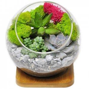 """Флорариум """"Зимний сад"""" на подставке"""