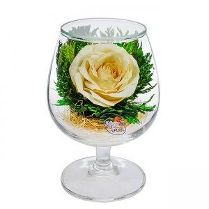 Композиция из белой розы (GSRc)