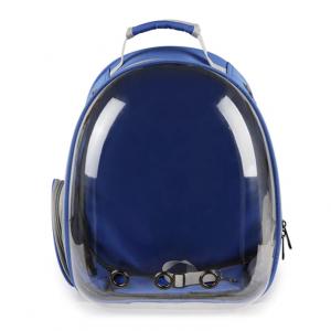 Рюкзак-капсула прозрачный, синий