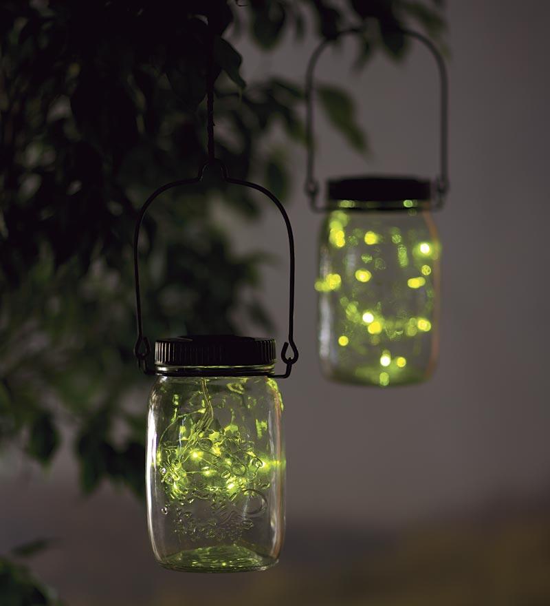 картинки светлячки в банке на траве инструкции нужно