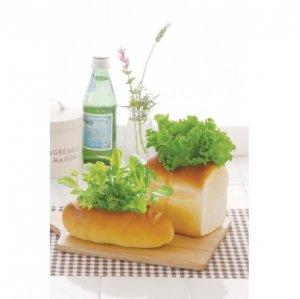 Кашпо для выращивания салата Green Bread Булка хлеба